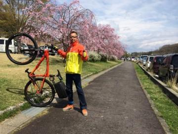 自転車に乗って、花見に行って来ました。