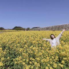 菜の花畑 byヒロコ