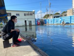 釣り堀へ by石田