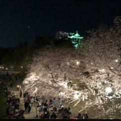花より団子 byヒロコ