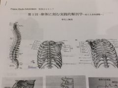 解剖学の勉強会by往西