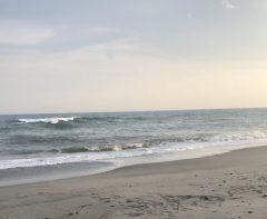 中田島砂丘へ行って来ました。 Masuda☆