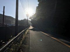トライアスロン部 朝練  okamoto