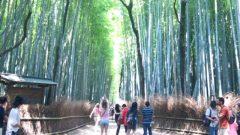ふらっと京都へ Masuda☆